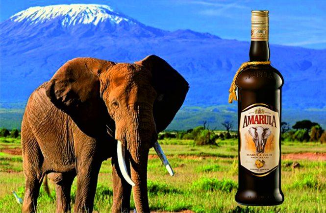 Amarula Wild Fruit Liqueur