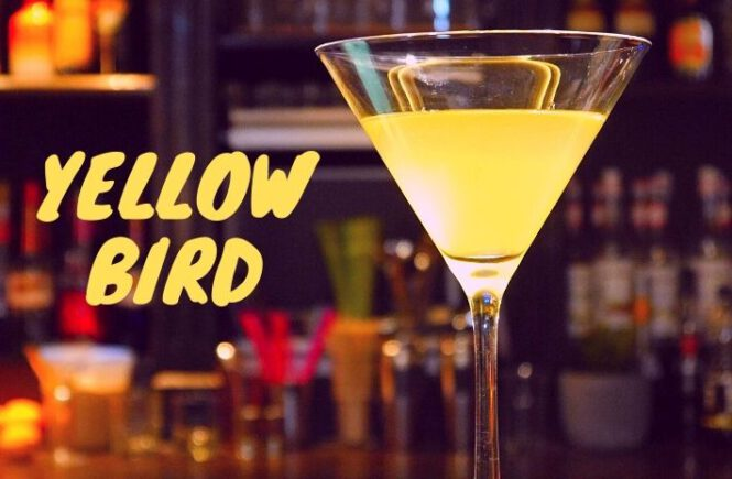 How to make the Yellow Bird Cocktail