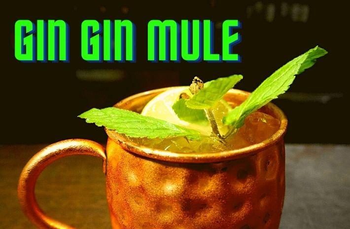 GIN GIN MULE COCKTAIL Recipe
